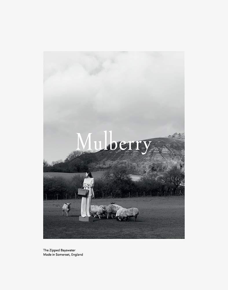 Mulberry by Maya Zepinic