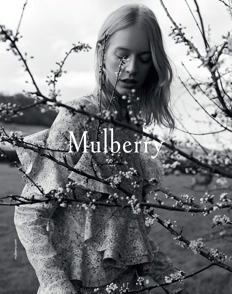 Mulberry by Maya Zepinic